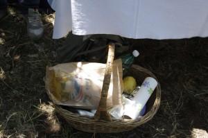picnicNappo2